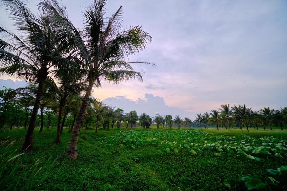 Ảnh thiên nhiên yên bình ở Việt Nam
