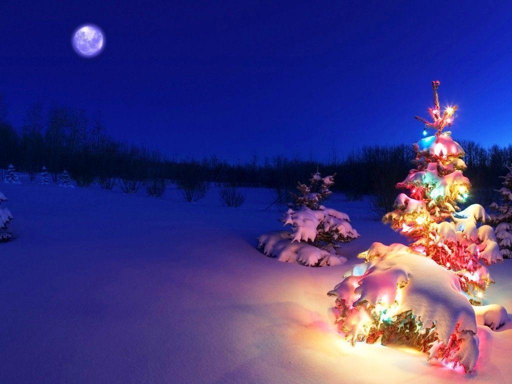 Background giáng sinh đêm tối