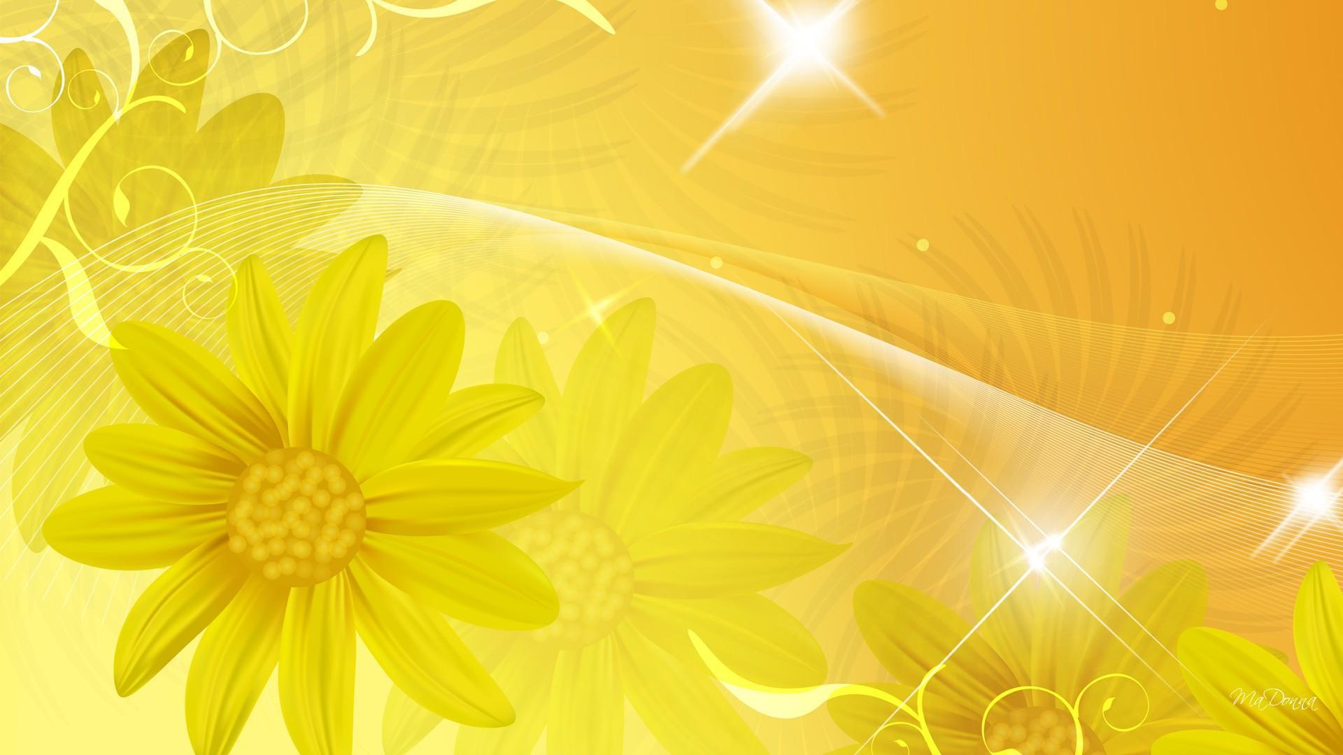 Background hoa cúc vàng