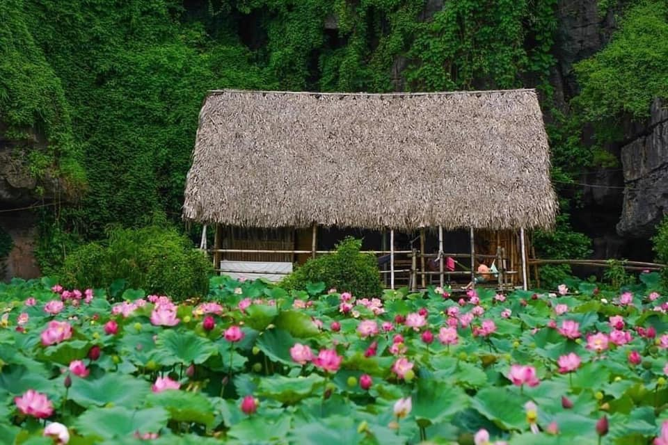 Cảnh đẹp thiên nhiên Việt Nam