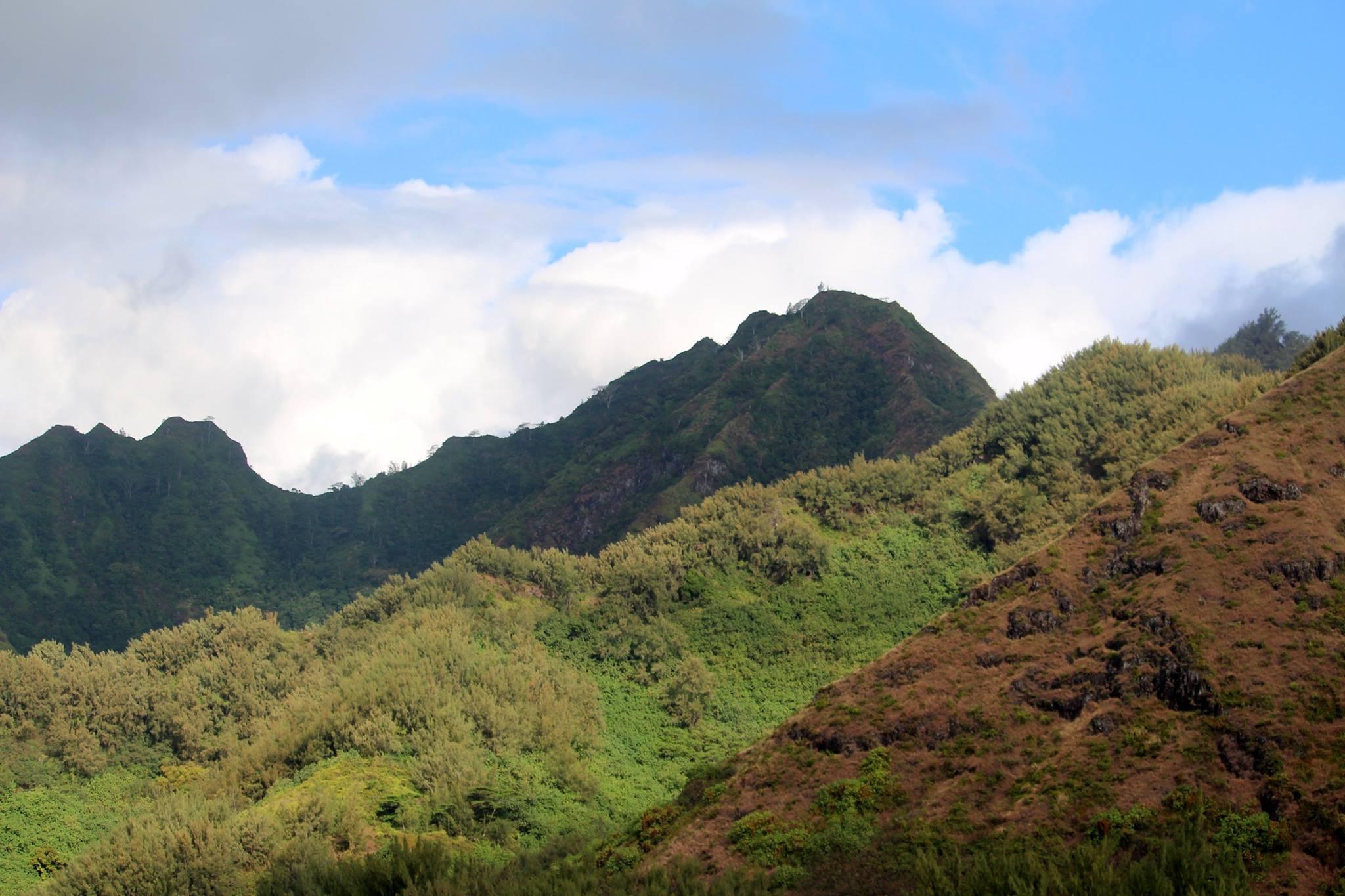 Hình ảnh núi cao