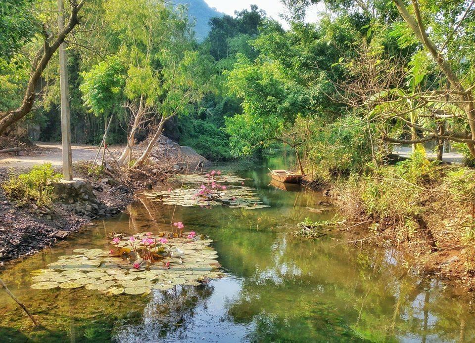 Hình ảnh thiên nhiên tại Việt Nam