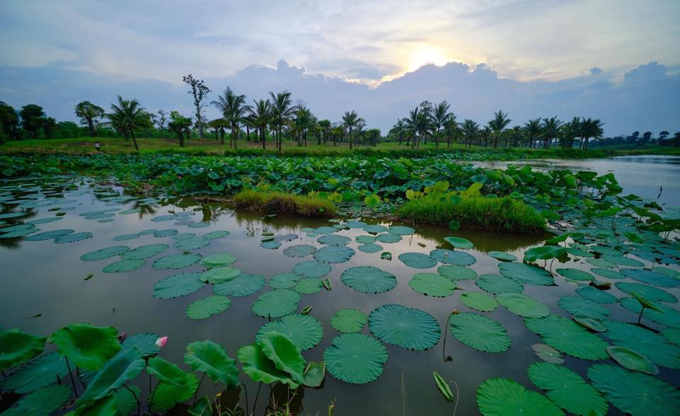 Hình đẹp về thiên nhiên Việt Nam