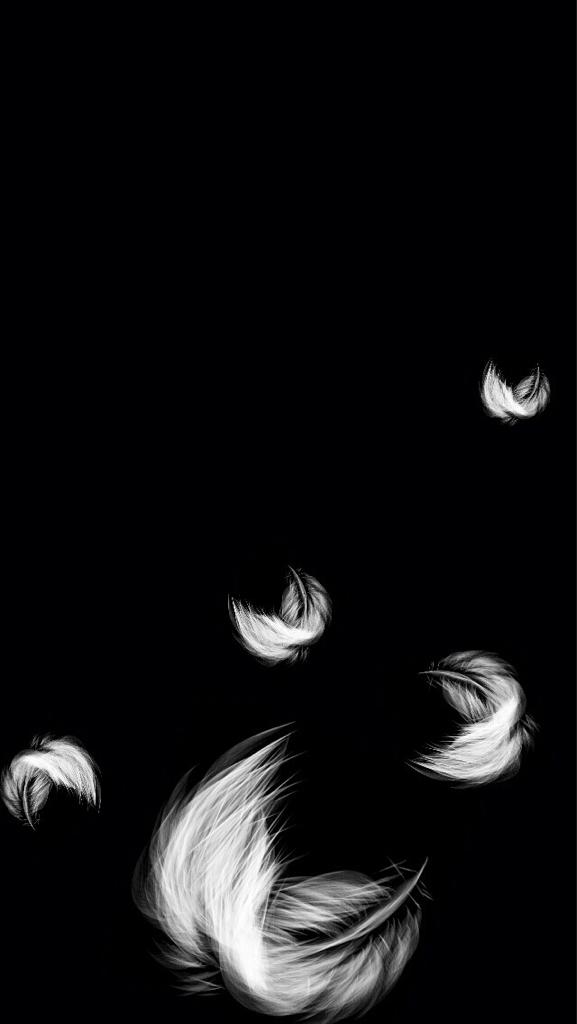 Hình ảnh đen lông vũ