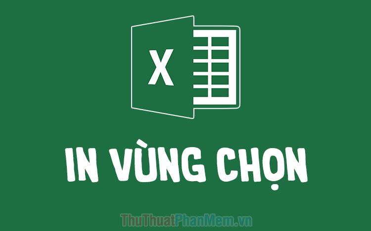 Cách in vùng chọn trong Excel