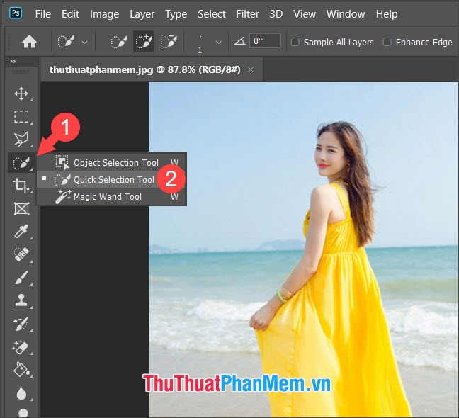 Chọn Quick Selection Tool