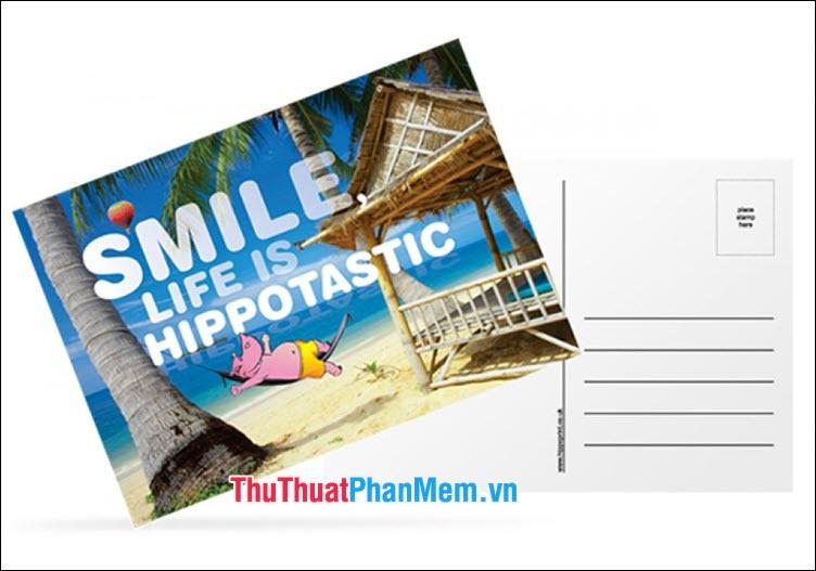 Postcard kèm ảnh chụp