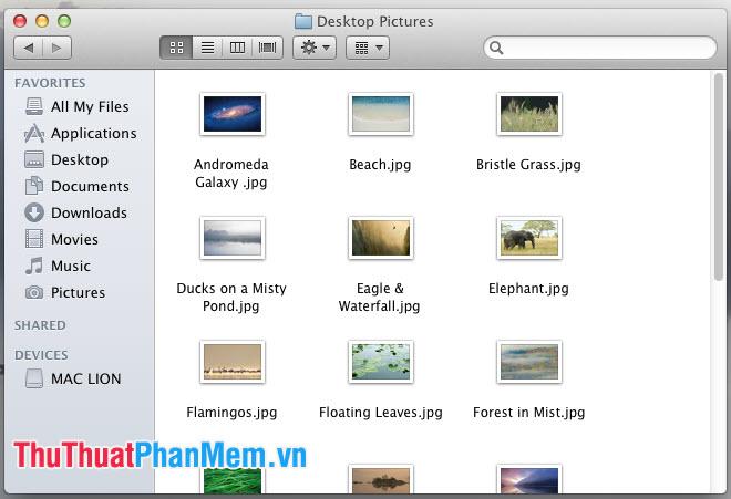 Bạn sẽ tìm thấy hình nền mặc định trên Mac nằm trong thư mục