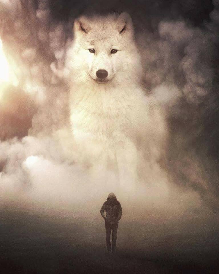 Ảnh người và sói