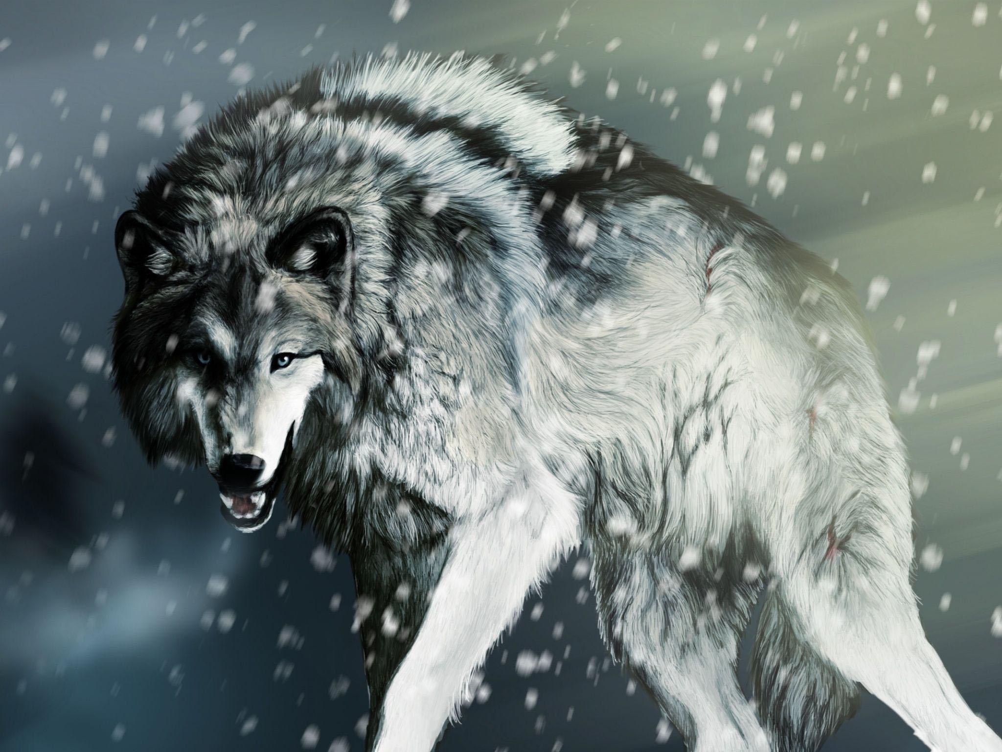 Ảnh sói đẹp nhất