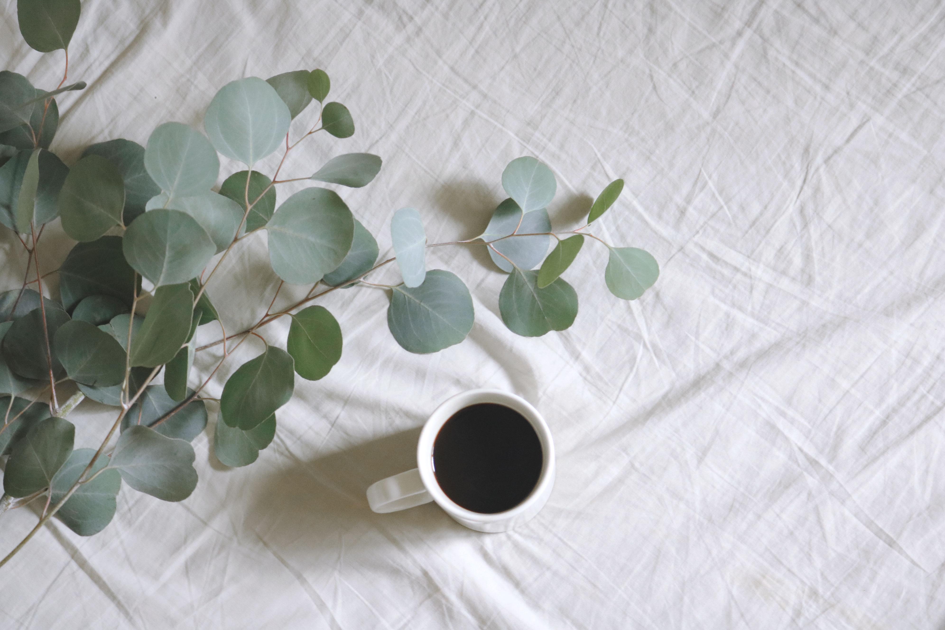 Background cà phê đơn giản đẹp nhất