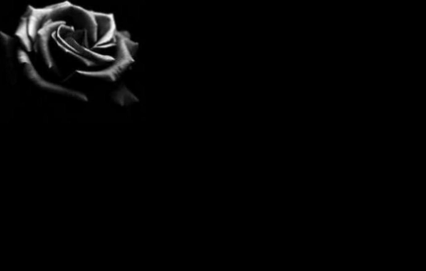 Background đen