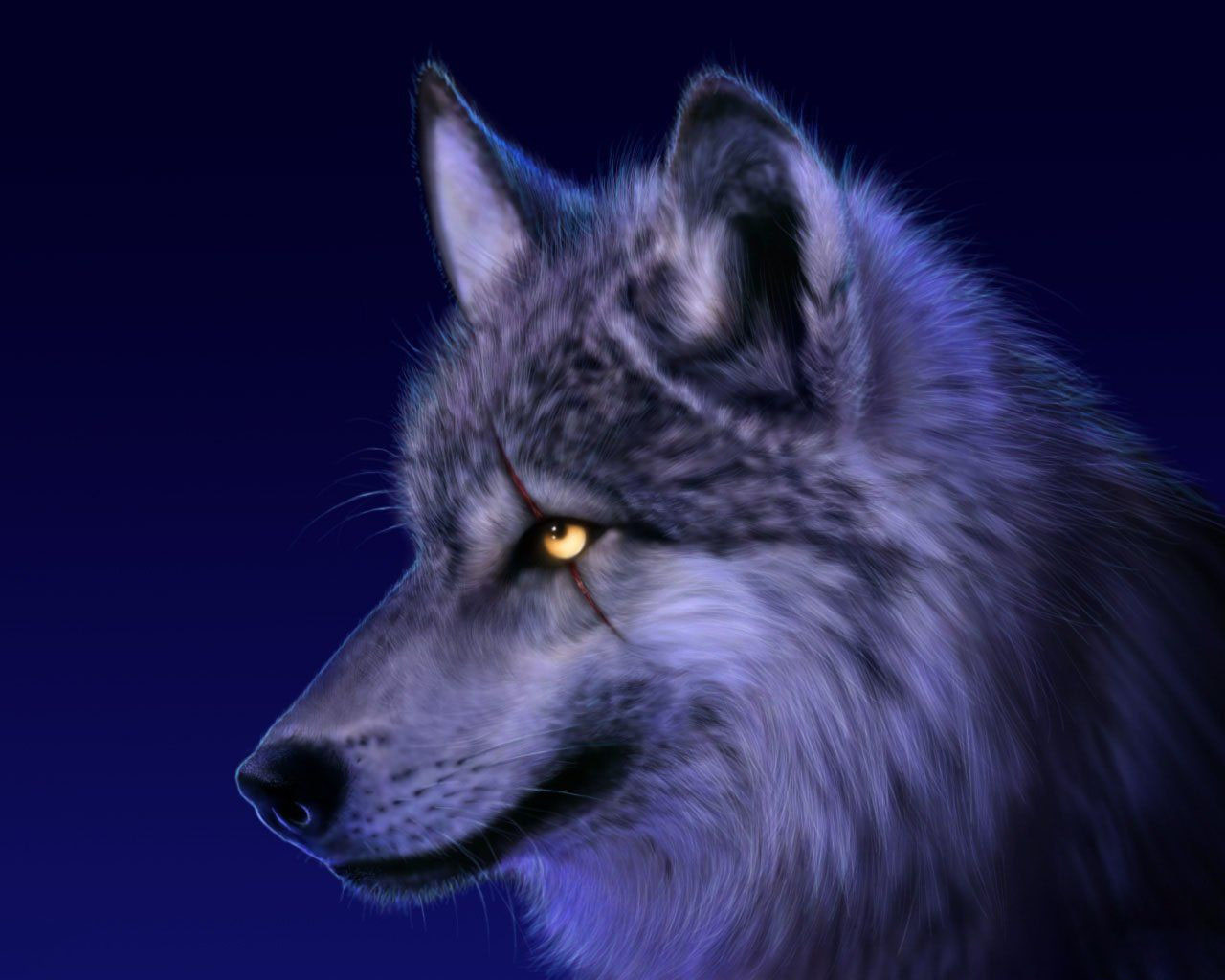 Hình ảnh con chó sói