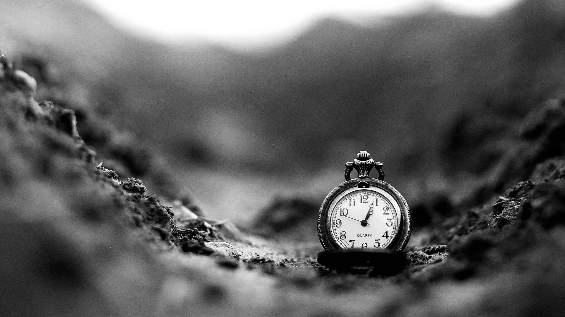 Hình ảnh đồng hồ đeo tay đẹp