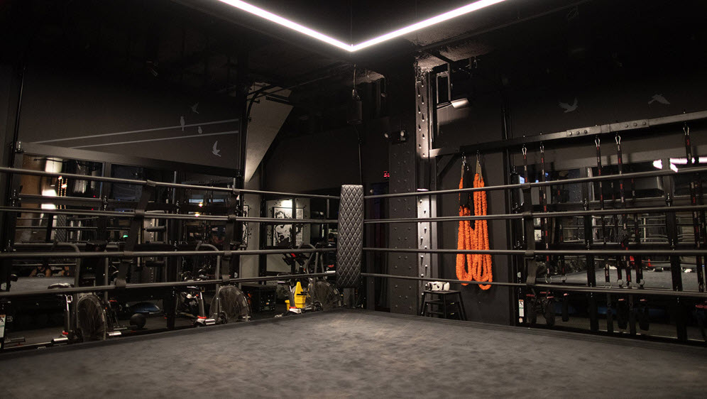 Background gym boxing