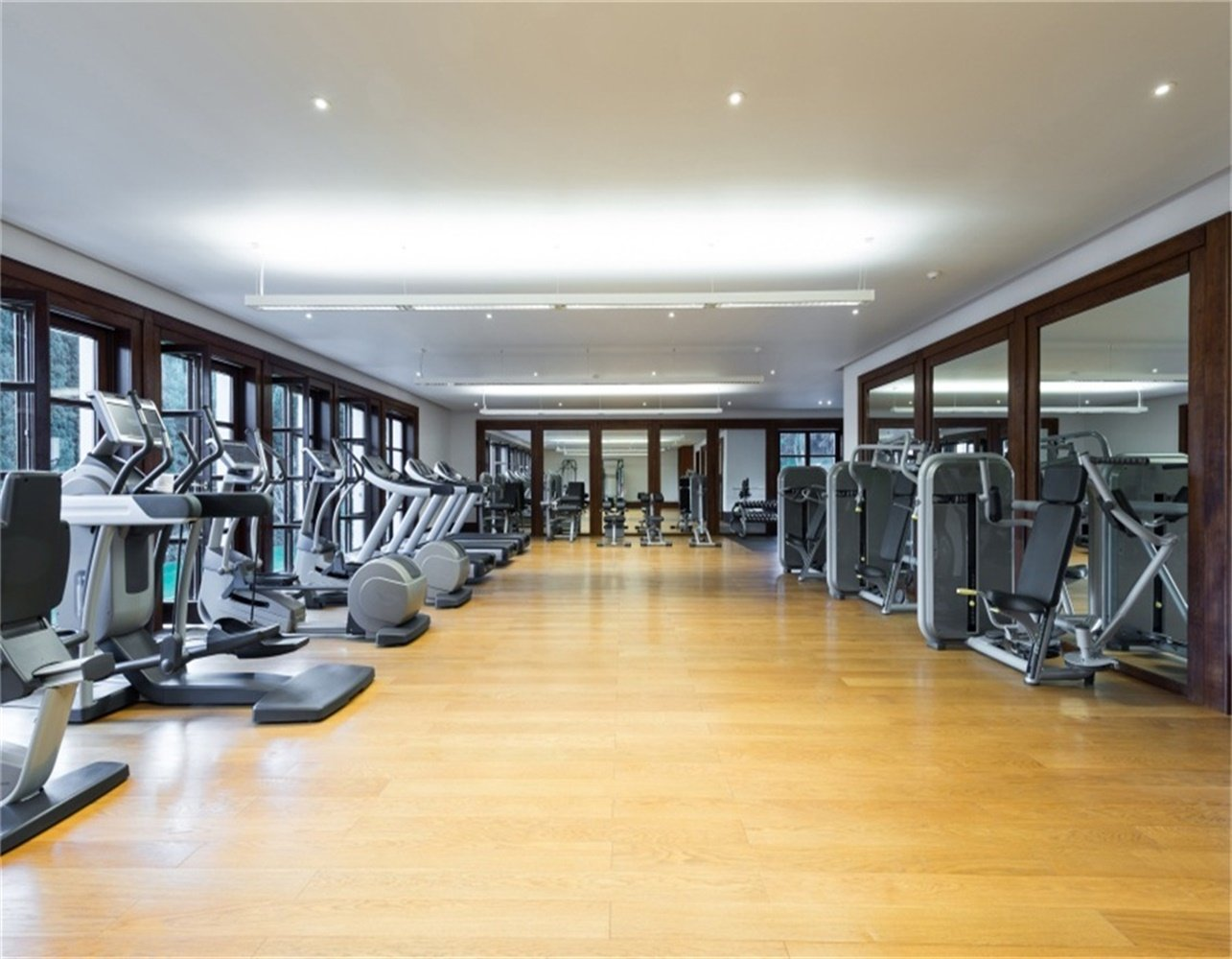 Background phòng gym