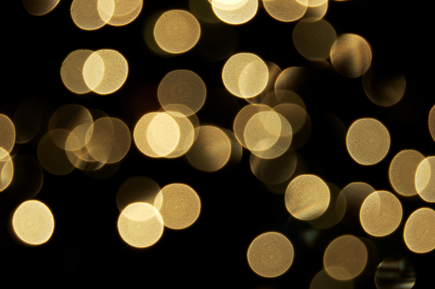 Hình ảnh slide blur đẹp