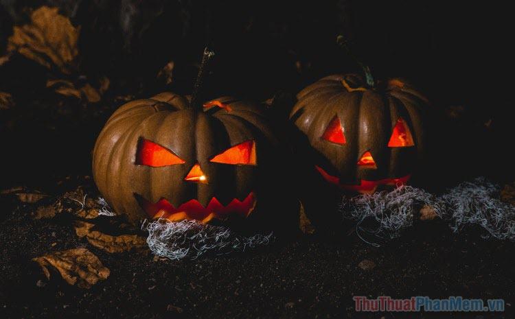 Những bộ phim kinh dị Halloween hay nhất
