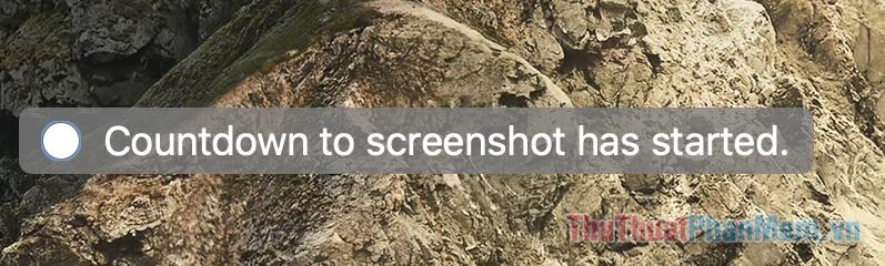 Nếu bạn chọn From Entire Screen..., bộ đếm thời gian sẽ xuất hiện trước khi màn hình được chụp lại