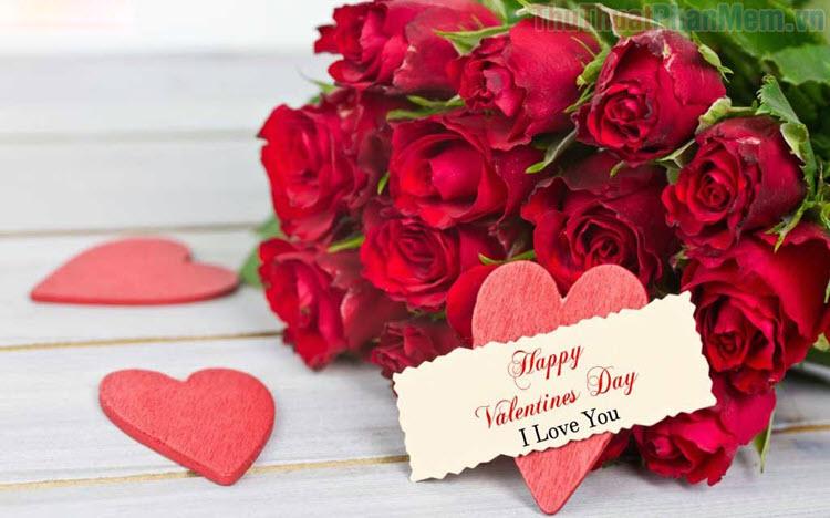 Hình ảnh hoa Valentine đẹp